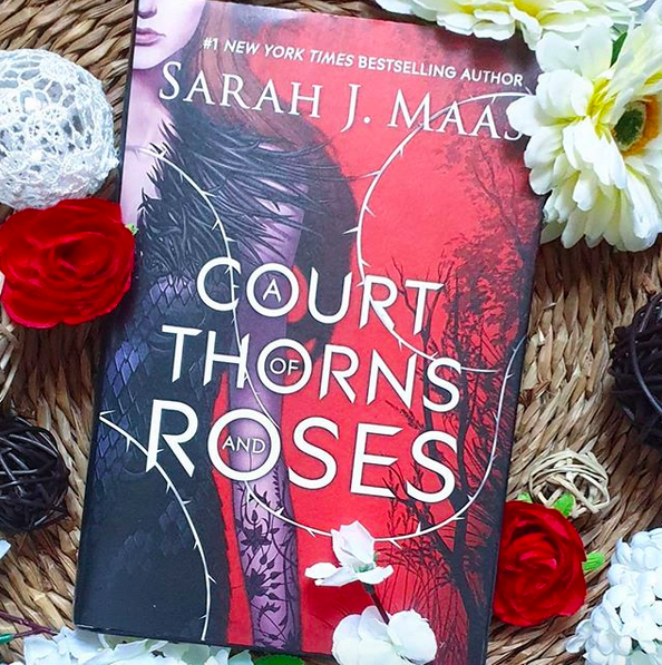 Chronique : A court of thorns and roses de Sarah J. Maas