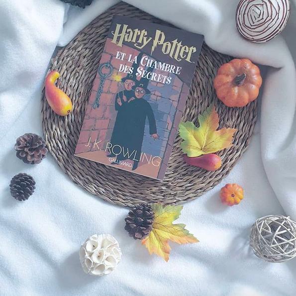 Harry Potter et la chambre des secrets de JKRowling